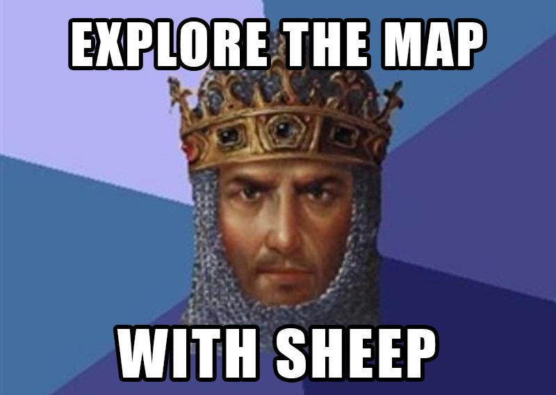 AoE Meme Sheep